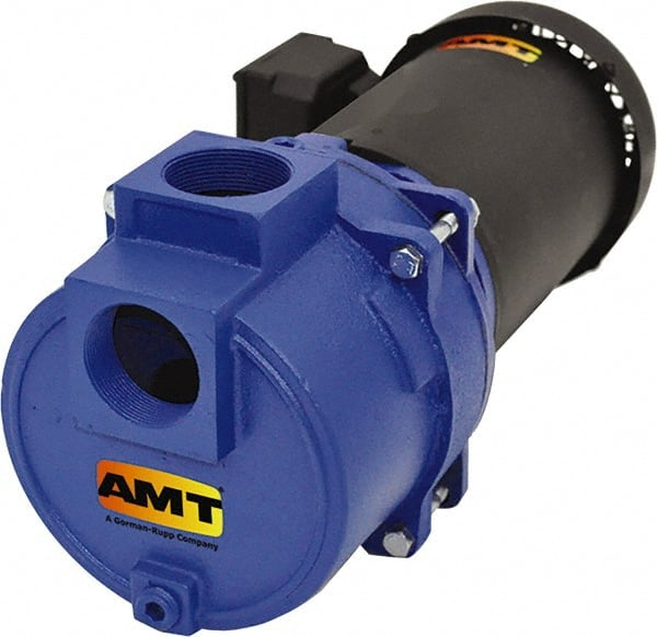 3 NPT Female Suction /& Discharge Ports Cast Iron Curve B 5 HP AMT Pump 2875-95 Self-Priming Centrifugal Pump 208-230//460 V 3 Phase