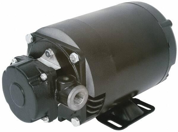 Pentair - 3/4 hp, 115/230 Input Voltage, 3/4 Inlet, 3/4