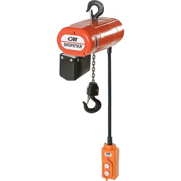 Hoists Trolleys Accessories Material Lifting Msc Industrial Supply