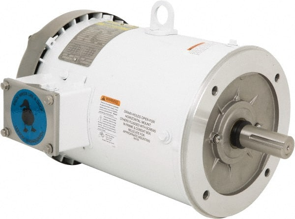Leeson dc motors for Types of electric motors